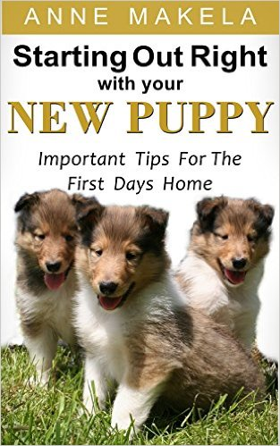 Starting Out Right With Your New Puppy
